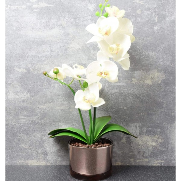 Artifical Orchid in Glass Pot